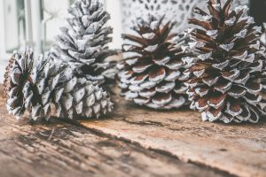 background brown christmas